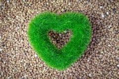 Fondo asado del grano del alforfón con el corazón verde del eco, concepto de productos orgánico imagen de archivo