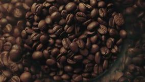 Fondo asado fragante de los granos de café almacen de metraje de vídeo