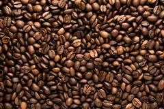 Fondo asado fresco de los granos de café del arabica Imágenes de archivo libres de regalías