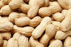 Fondo ascendente cercano de los cacahuetes imagen de archivo libre de regalías