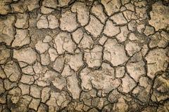 Fondo asciutto del suolo della crepa Fotografia Stock
