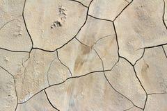 Fondo asciutto e incrinato del fango Fotografia Stock