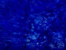 Fondo astratto blu di mezzanotte reale del fiore Fotografia Stock Libera da Diritti