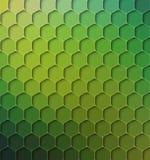 Fondo astratto colorato foresta pluviale, illustrazione di vettore Fotografia Stock Libera da Diritti