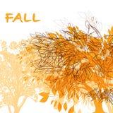 Fondo astratto con Autumn Trees Fotografia Stock Libera da Diritti