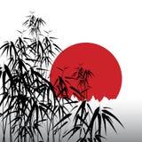 Fondo astratto con bambù Fotografia Stock Libera da Diritti