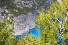 Fondo astratto con il mare, le rocce ed i pini fotografie stock libere da diritti