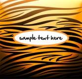 Modello della tigre Immagine Stock