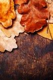 Fondo astratto con le foglie di autunno backg di legno di tiraggio sul vecchio fotografia stock libera da diritti