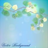 Fondo astratto con le foglie verdi fresche su sfondo naturale illustrazione vettoriale