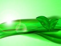 Fondo astratto con le linee verde, le foglie e la luce solare Immagine Stock Libera da Diritti