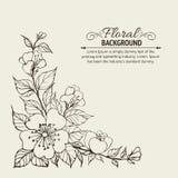 Fondo del fiore. royalty illustrazione gratis