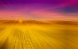 Fondo astratto del giacimento e del cielo blu del riso con sfuocatura radiale Fotografia Stock Libera da Diritti
