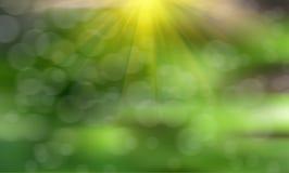 Fondo astratto della molla di arte o fondo di estate con fresco, agricoltura e la semina del concetto crescente di punto del seme Immagini Stock
