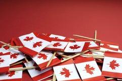 Fondo astratto delle bandiere nazionali di stuzzicadenti della foglia di acero rossa e bianca del Canada - primo piano Immagine Stock Libera da Diritti