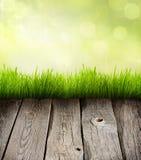 Fondo astratto delle plance e dell'erba Fotografie Stock
