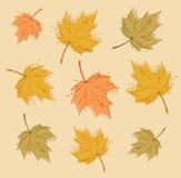 Fondo astratto di autunno con le foglie variopinte illustrazione di stock