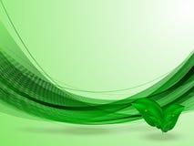 Fondo astratto di estate con le linee verde, foglie verdi Fotografia Stock Libera da Diritti