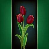 Fondo astratto di lerciume con i tulipani Fotografia Stock