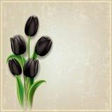 Fondo astratto di lerciume con i tulipani neri Immagine Stock