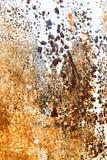 Fondo astratto di metallo dipinto arrugginito Immagine Stock