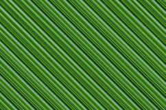 Fondo astratto, effetto di foglia di palma, modello verde a strisce di eco Fotografia Stock