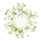 Fondo astratto floreale del modello della primavera con il fiore di bucaneve e posto per testo Immagini Stock Libere da Diritti