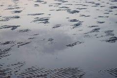 Fondo astratto - orme in acqua fangosa Fotografie Stock