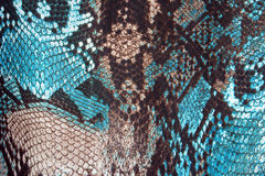 Fondo astratto, pelle di serpente d'imitazione Immagini Stock