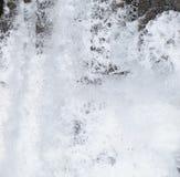 Fondo astratto - spruzza dell'acqua spumosa bianca contro le tonalità di Grey e del nero fotografie stock libere da diritti