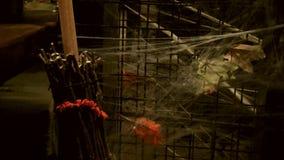 Fondo asustadizo decorativo del web de araña para las decoraciones de Halloween metrajes