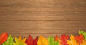 Fondo - autunno - foglie - fogliame Fotografie Stock