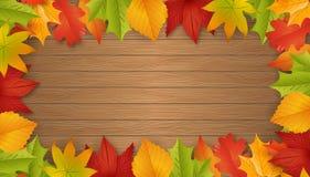 Fondo - autunno - foglie - fogliame Fotografia Stock Libera da Diritti