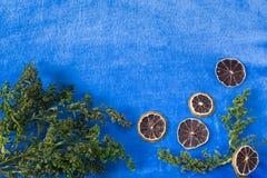 Fondo azul con la decoración Fotografía de archivo