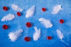 Fondo azul con las plumas Imagen de archivo libre de regalías