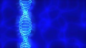 Fondo azul de la DNA (ácido desoxirribonucléico) con las ondas Foto de archivo libre de regalías
