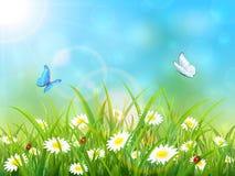 Fondo azul de la naturaleza con el sol y las mariposas Imagen de archivo libre de regalías