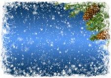 Fondo azul de la Navidad con la helada blanca y ramas del spruc Fotografía de archivo libre de regalías