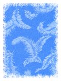 Fondo azul de la pluma Imagen de archivo