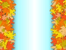 Fondo azul del otoño con las hojas de arce coloridas en los lados Fotografía de archivo