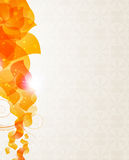 Fondo beige con el modelo anaranjado de los pétalos Fotografía de archivo libre de regalías