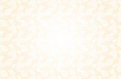Fondo beige delicato con il modello floreale del pizzo Fotografia Stock Libera da Diritti