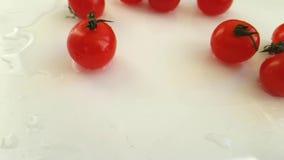 Fondo bianco bagnato di giro delizioso sano fresco dei pomodori ciliegia, fucilazione lenta stock footage