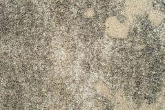 Fondo bianco d'annata o grungy di cemento naturale o di vecchia struttura di pietra Fotografie Stock Libere da Diritti