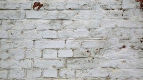 Fondo bianco del muro di mattoni di lerciume Fotografia Stock Libera da Diritti