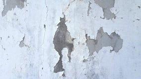 Fondo bianco e grigio di lerciume del cemento della parete di struttura Fotografie Stock