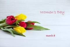 Fondo bianco e tulipani colorati Le congratulazioni di concetto Fotografie Stock