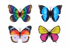 Fondo bianco isolato variopinto della farfalla differente Fotografia Stock