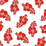 Fondo bianco senza cuciture rosso del modello di fiori Immagine Stock