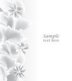 Fondo blanco abstracto. Frontera floral. Imágenes de archivo libres de regalías